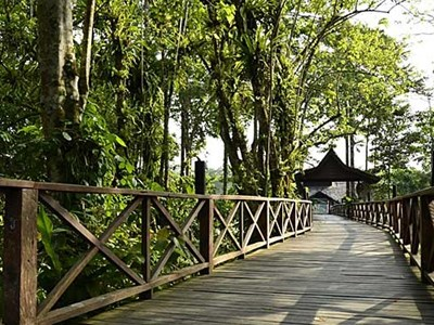 Sakau Rainforest Lodge, Borneo